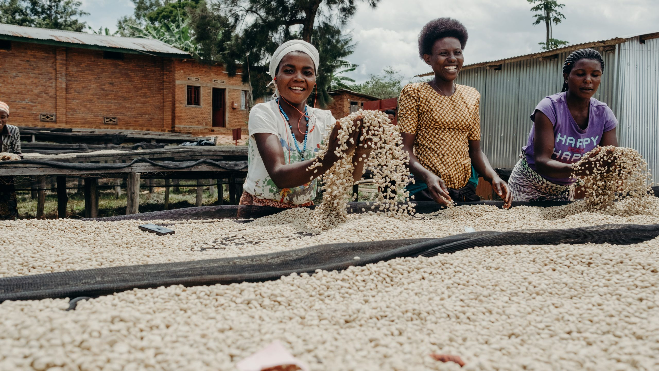 The sweet smell of success: the link between Rwandan coffee farmers and Scottish coffee drinkers